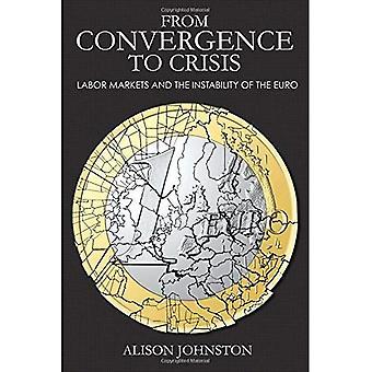 Från konvergens krisen: Labor marknader och instabiliteten i euron (Cornell studier i pengar)