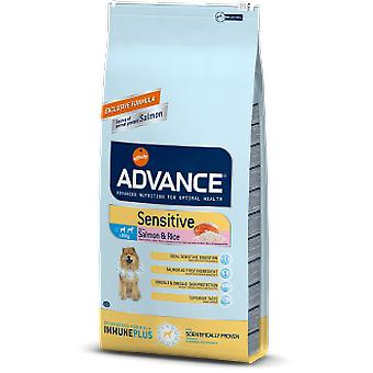 Advance Sensitive Salmon & Rice (Dogs , Dog Food , Dry Food)