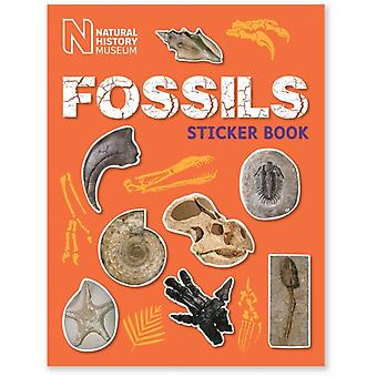 Fossils Sticker Book (Paperback) by Natural History Museum