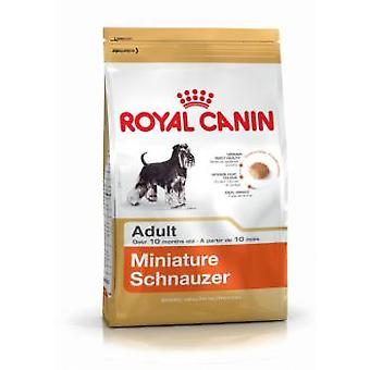 Royal Canin Miniature Schnauzer Adult (Dogs , Dog Food , Dry Food)