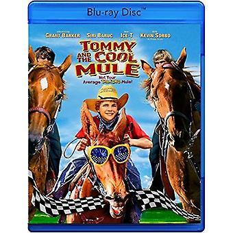 Tommy & de koele Mule [Blu-ray] USA import