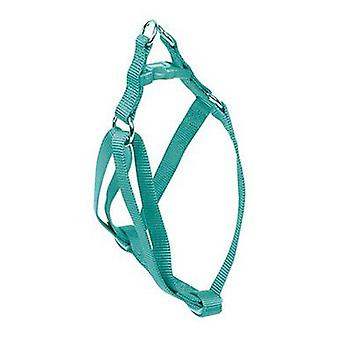 Nayeco Basic Dog Harness Size XL Aquamarine