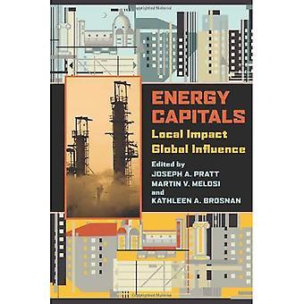 Energie-Hauptstädte: Lokale Auswirkungen, globalen Einfluss (Geschichte der städtischen Umwelt)