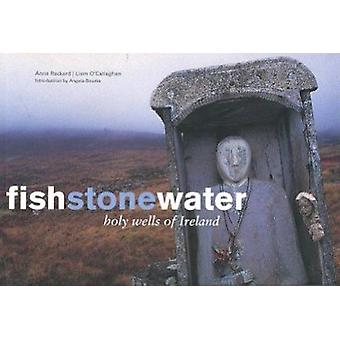 Fish Stone Water - The Holy Wells of Ireland by Anna Rackard - Liam O'