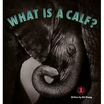 What is a Calf? by Siri Urang - 9781776500253 Book