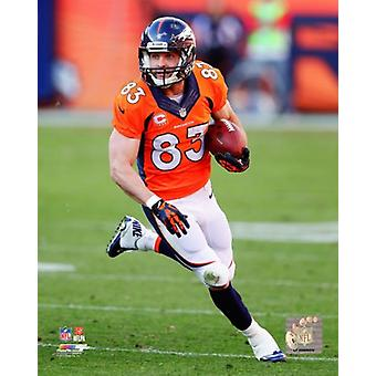 Wes Welker 2013 azione Photo Print (8 x 10)