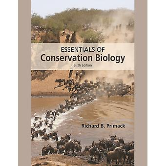 Essentials of Conservation Biology (Hardcover) by Primack Richard B.