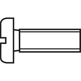 TOOLCRAFT 815853 Allen tornillos M4 30 mm ranura DIN 84 ISO 1207 plásticos, poliamida 10 PC