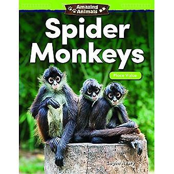 Animaux étonnants: Spider Monkeys: placer la valeur (Grade 1) (lecteurs de mathématiques)