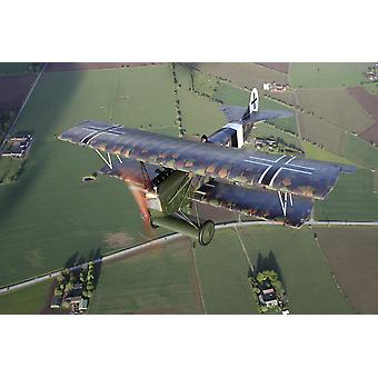 Sebbarp Sweden - Fokker DVII World War I replica fighter in the air Poster Print