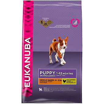 Eukanuba Puppy & Junior Medium Breeds (Dogs , Dog Food , Dry Food)