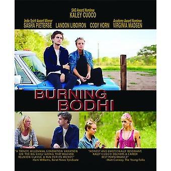 Burning Bodhi [Blu-ray] USA import