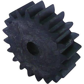 Reely Wood, Plastic Cogwheel Module Type: 1.0 No. of teeth: 20 1 pc(s)