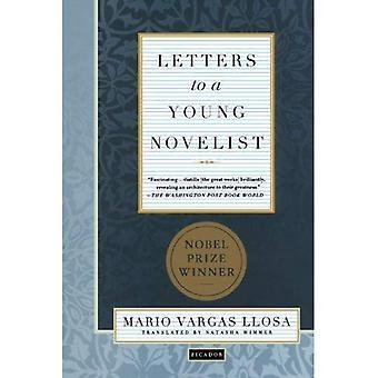 Lettres à un jeune romancier