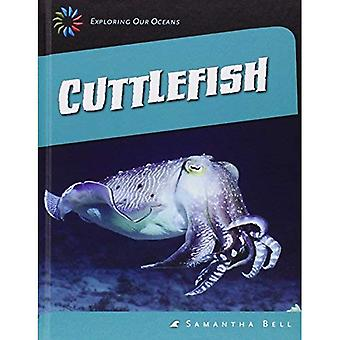 Cuttlefish (21st Century Skills Library: Exploring Our Oceans)