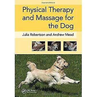 Terapia física y masaje para el perro