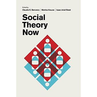 Social Theory Now by Claudio E Benzecry - 9780226475288 Book