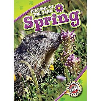 Spring by Rebecca Pettiford - 9781618913029 Book