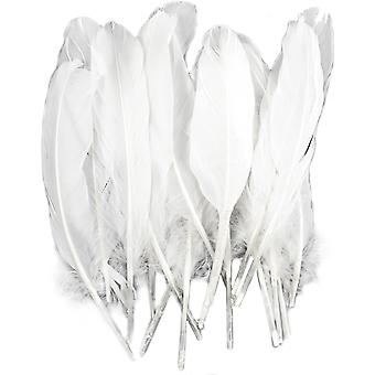 Goose Wing Rounds Feathers 22/Pkg-White MD38190