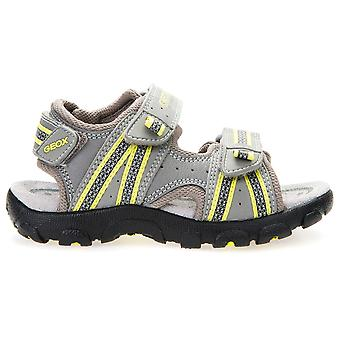 Geox Boys Strada J4224A Sandals Grey Lime