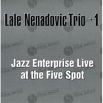 Lale Nenadovic Trio - Jazz Enterprise Live at the Five Spot [CD] USA import
