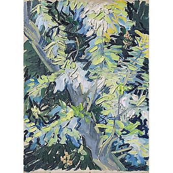 Vincent Van Gogh - Blossoming Acacia Branches, 1890 Poster Print Giclee