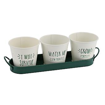CGB Giftware Vegetable Patch 3 Message Planters and Holder