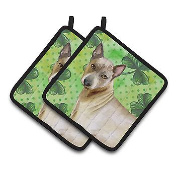 Carolines Treasures  BB9854PTHD Thai Ridgeback St Patrick's Pair of Pot Holders