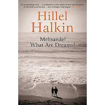 Melisande! What are Dreams? by Hillel Halkin - 9781847085009 Book