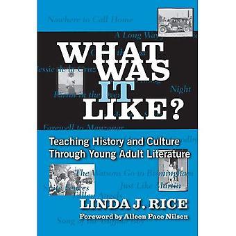 Comment était-ce?: enseignement de l'histoire et la Culture à travers la littérature adulte jeune