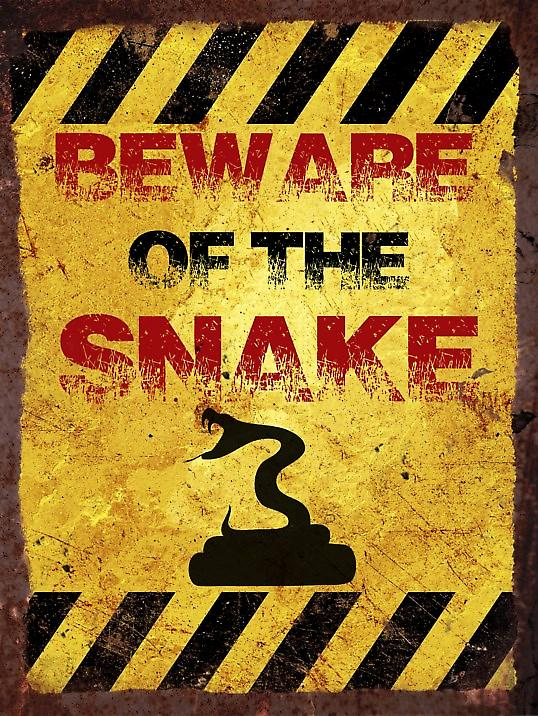 Metal Wall Sign - Beware of the snake