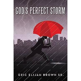 Gods Perfect Storm by Brown Sr. & Eric Elijah