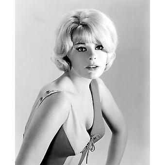 The Money Trap Elke Sommer 1965 Photo Print