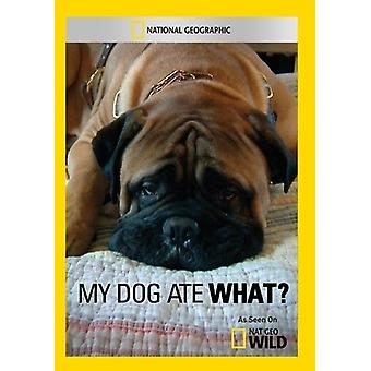 My Dog Ate What? [DVD] USA import