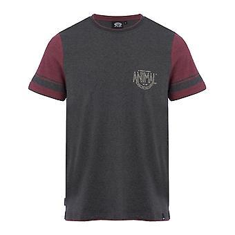 Animalske Delano kortærmet T-Shirt