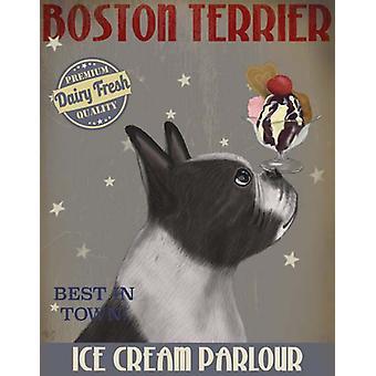 Boston Terriër ijs Poster Print by Fab, Funky (13 x 19)