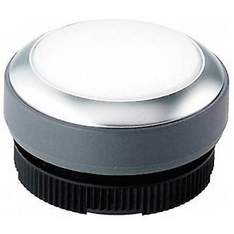 Pushbutton planar White RAFI RAFIX 22 FS+ 1.30.270.021/2200 1 pc(s)