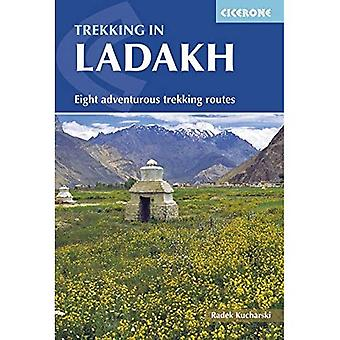 Trekking au Ladakh (Trekking International)