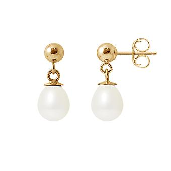 Earrings ears Pendantes pearls of Culture white and yellow gold 750/1000