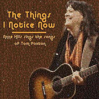 Anne Hills - ting jeg mærke nu-Anne Hills synd [CD] USA importerer
