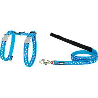 Red Dingo Petral-Strap Style White Star Cat And Turquoise
