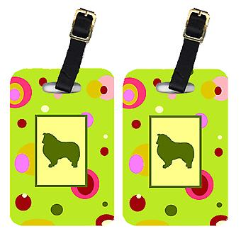 Carolines Treasures  CK1126BT Pair of 2 Collie Luggage Tags
