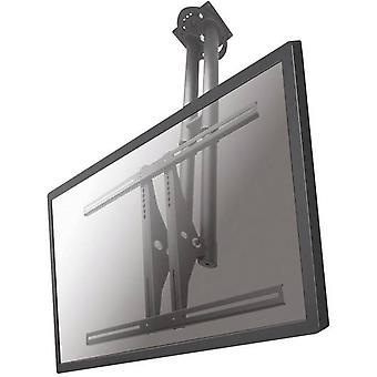 TV ceiling mount 94,0 cm (37) - 190,5 cm (75) Swivelling/tiltable NewStar Products PLASMA-C100