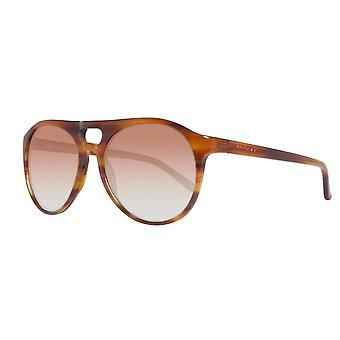 Gant sunglasses mens Brown