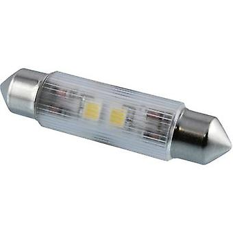 Signal Construct LED festoon EEC: A++ (A++ - E) White 12 Vdc 50 lm 114362 MSOH
