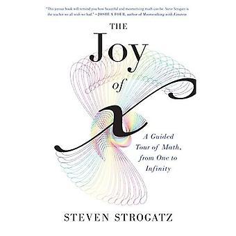 Glädjen i X: en guidad tur av matematik, från en till oändlighet