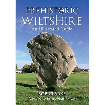 Prähistorische Wiltshire: Eine illustrierte Anleitung