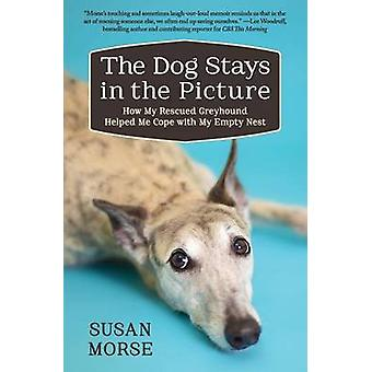 The Dog Stays in the Picture How My Rescued Greyhound Helped Me Cope with My Empty Nest by Morse & Susan