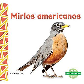 Mirlos Americanos (Robins) by Julie Murray - 9781624026058 Book