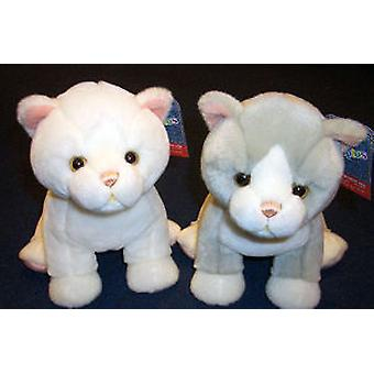 Import White Cat Soft